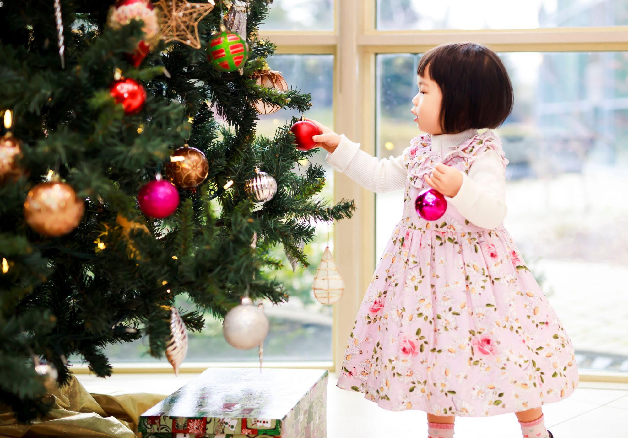 10 Best Christmas Gift Ideas for Your Tatlings