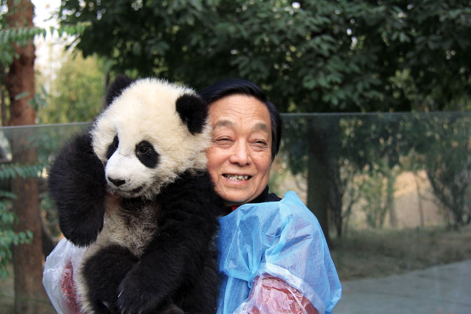 Artist Han Meilin at the China Conservation and Research Center for the Giant Panda with a giant panda cub—the inspiration for his work for years and now, his collection for Lalique