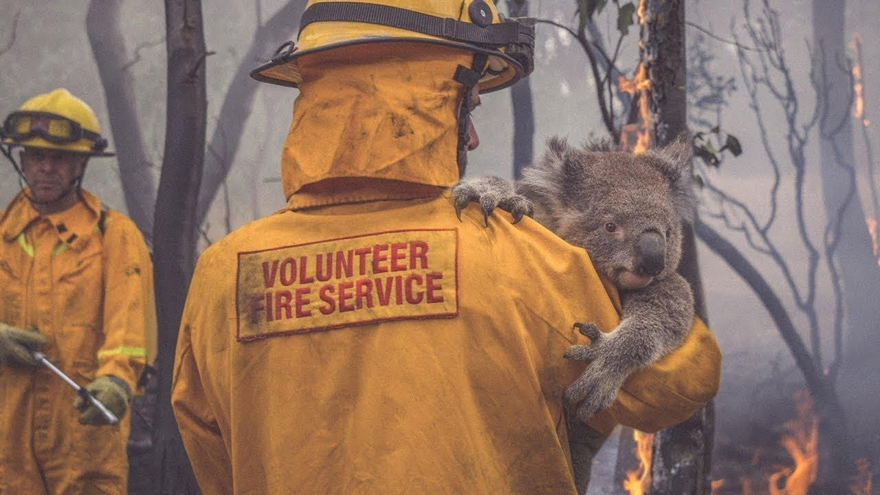 These Luxury Brands Are Offering Support To The Australian Bushfire Efforts—And How You Can Help