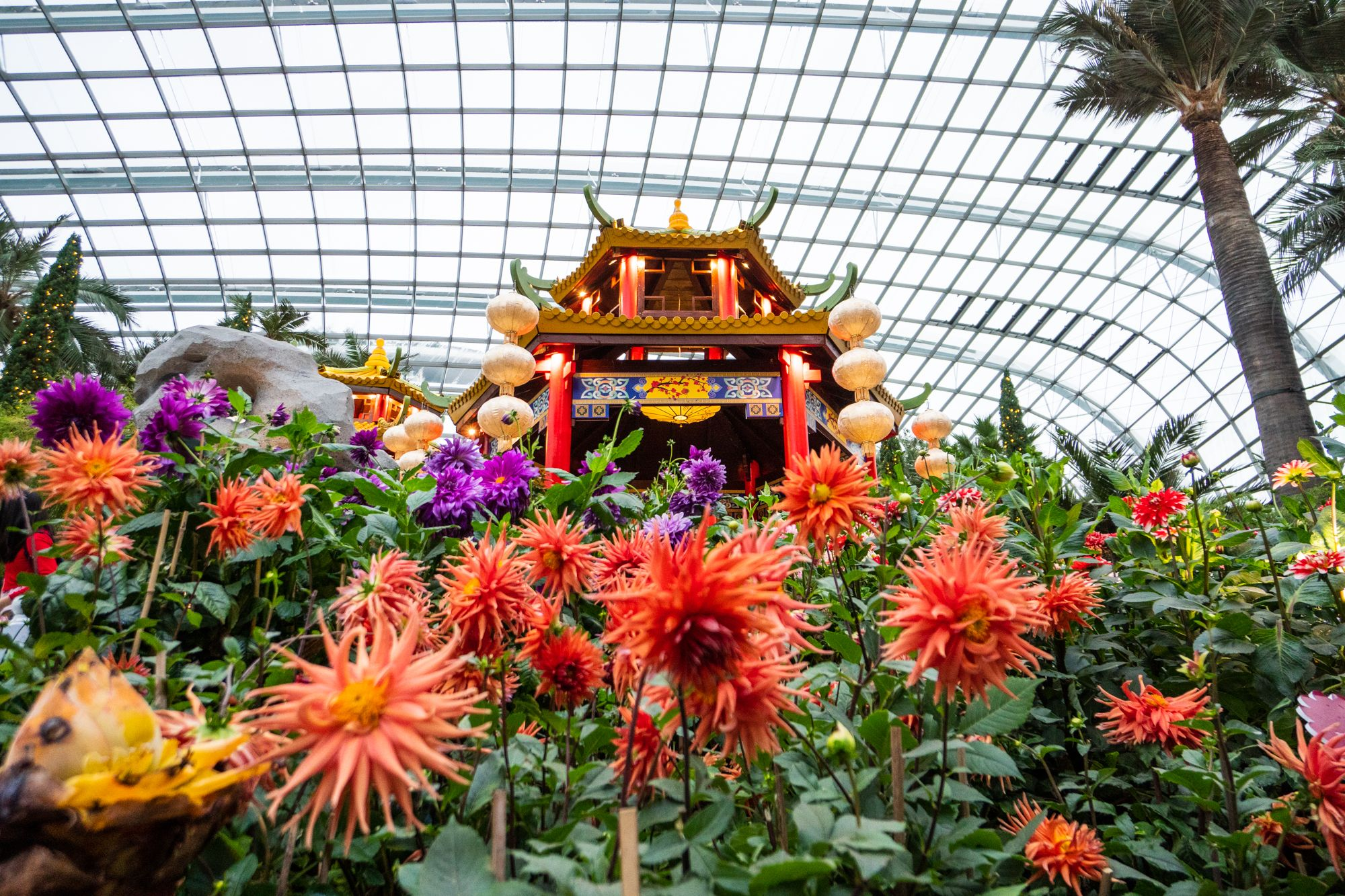 Where To Celebrate Chinese New Year 2020 In Singapore