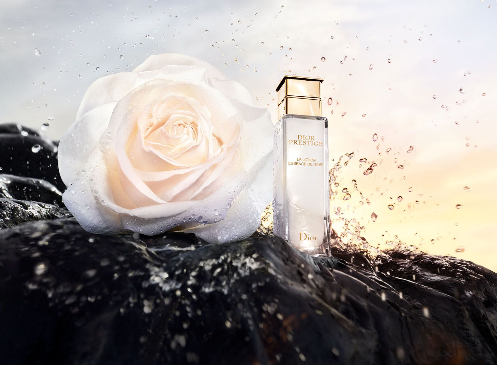 The Dior Prestige Lotion Essence de Rose is composed of a blend of the rose de Granville and its bud, a brand-new concoction derived by Dior Science