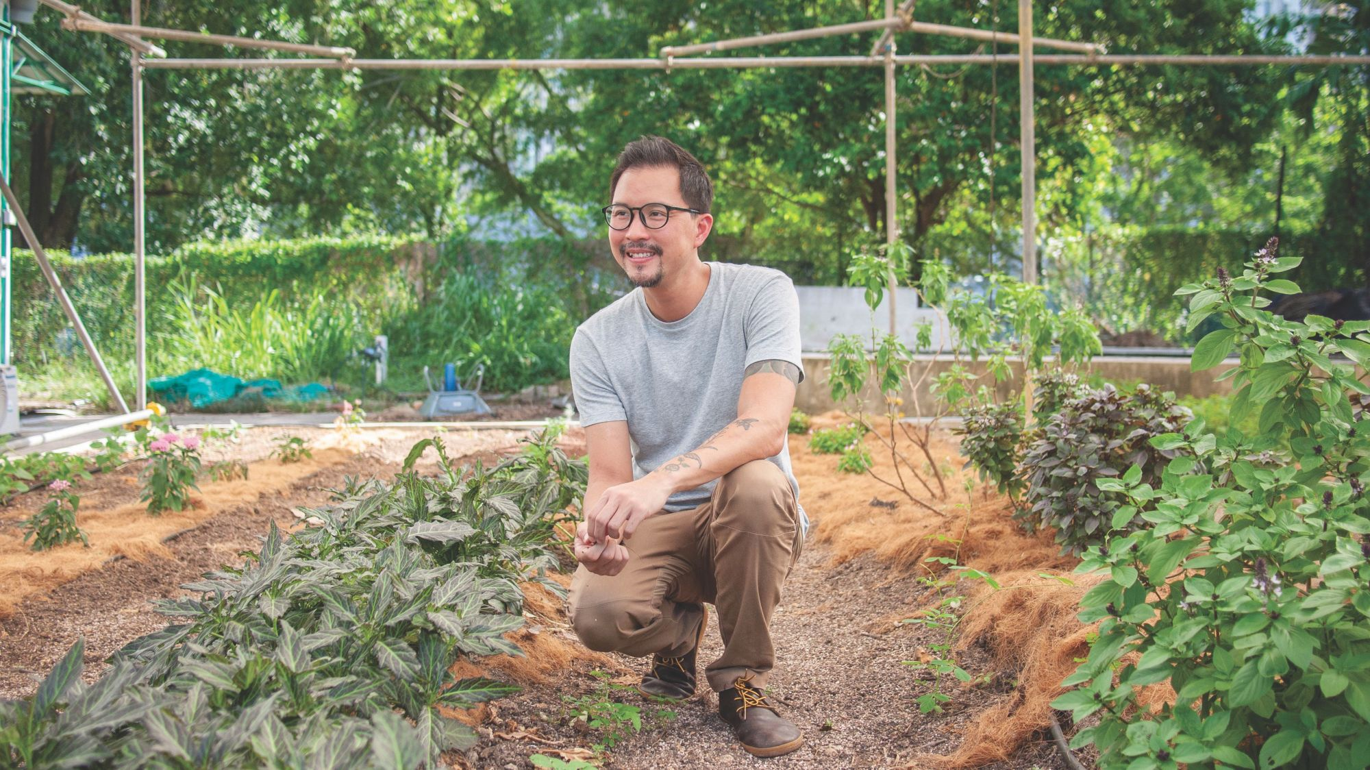 Edible Garden City's Bjorn Low Redefines Urban Farming For Greater Impact in Singapore