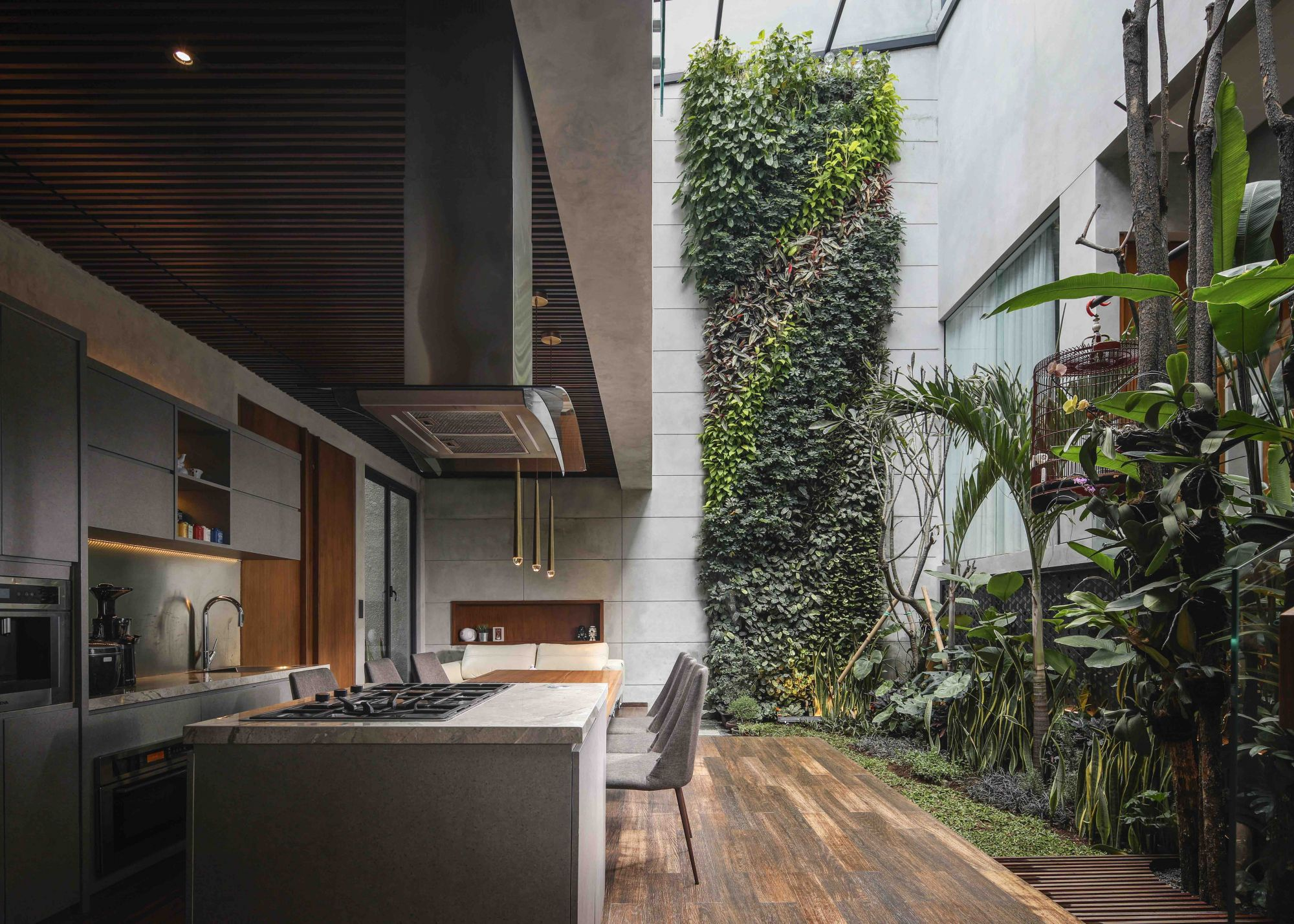 The Lumière House by Studio Avana features a lush indoor garden next to the kitchen