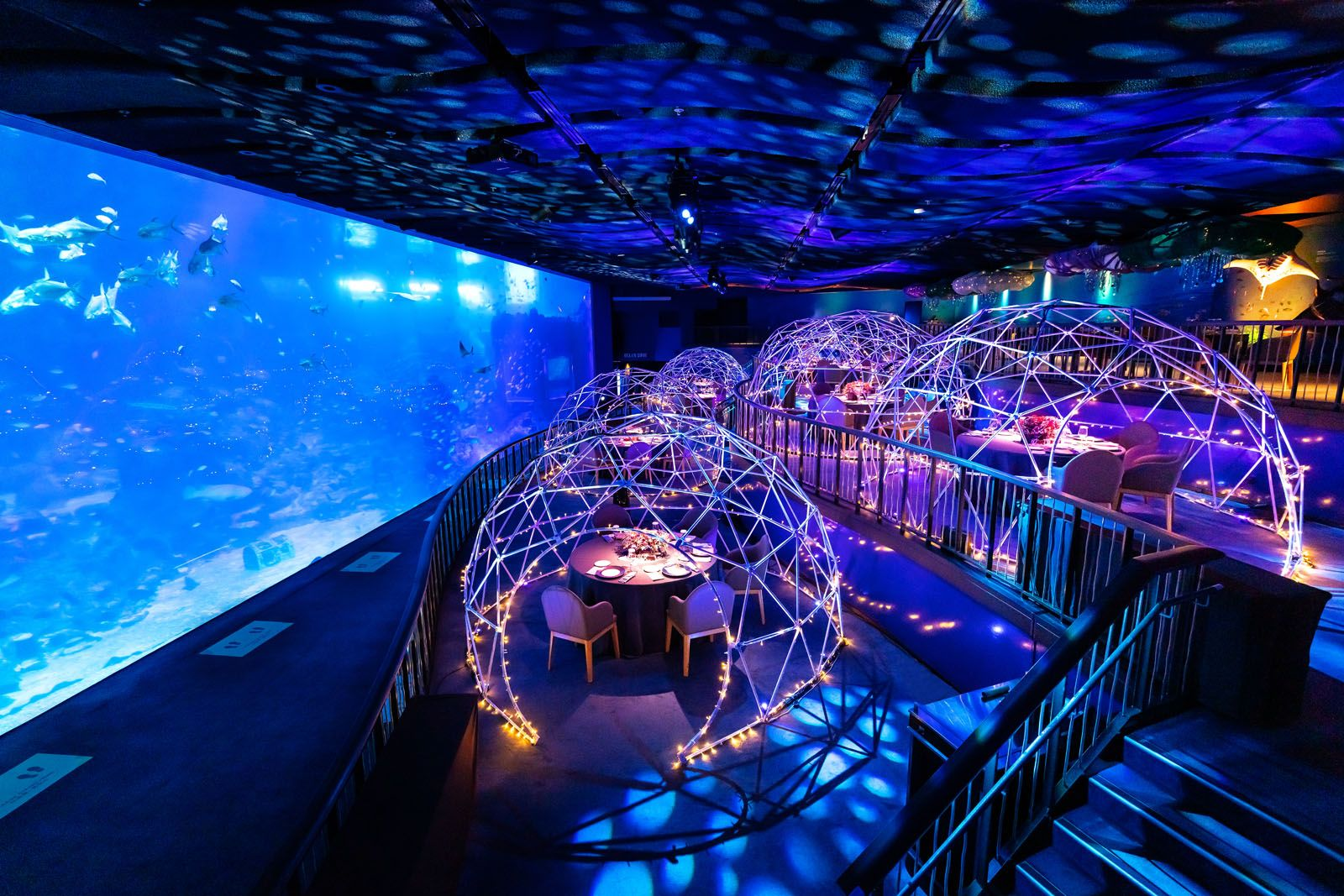 Dine Underwater at Resorts World Sentosa's New Pop-Up Restaurant in S.E.A. Aquarium