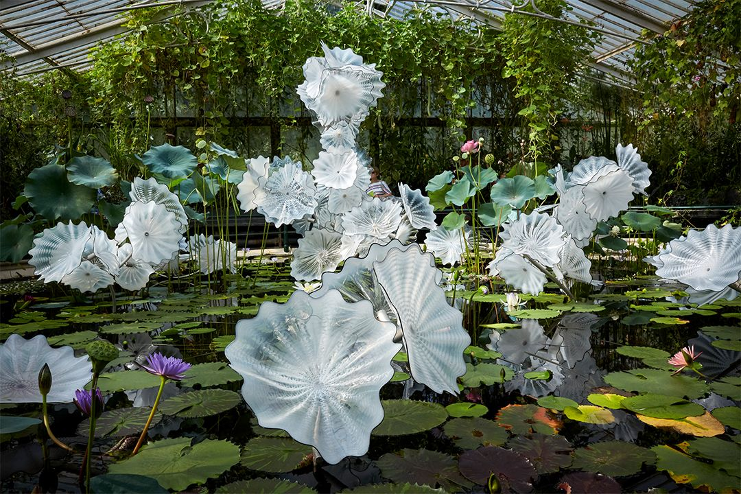 Dale Chihuly  Ethereal White Persian Pond (detail), 2018  Royal Botanic Gardens, Kew, London, installed 2019 (Image: © Chihuly Studio. All Rights Reserved.)