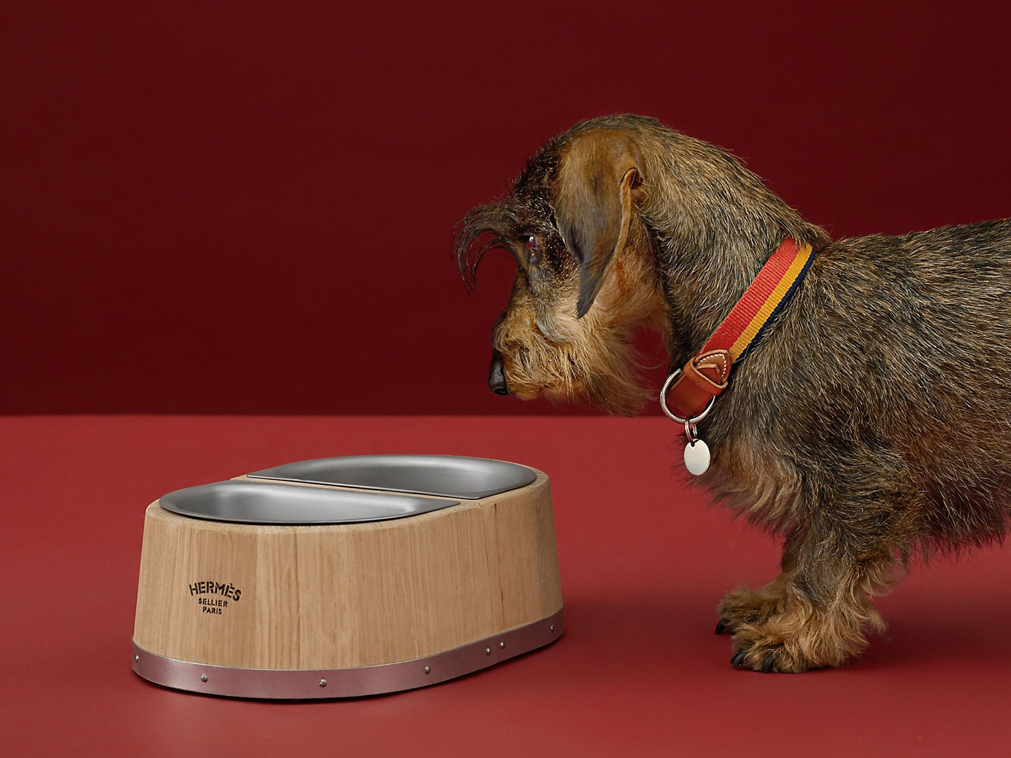 Dog bowl (small model), available from Hermès