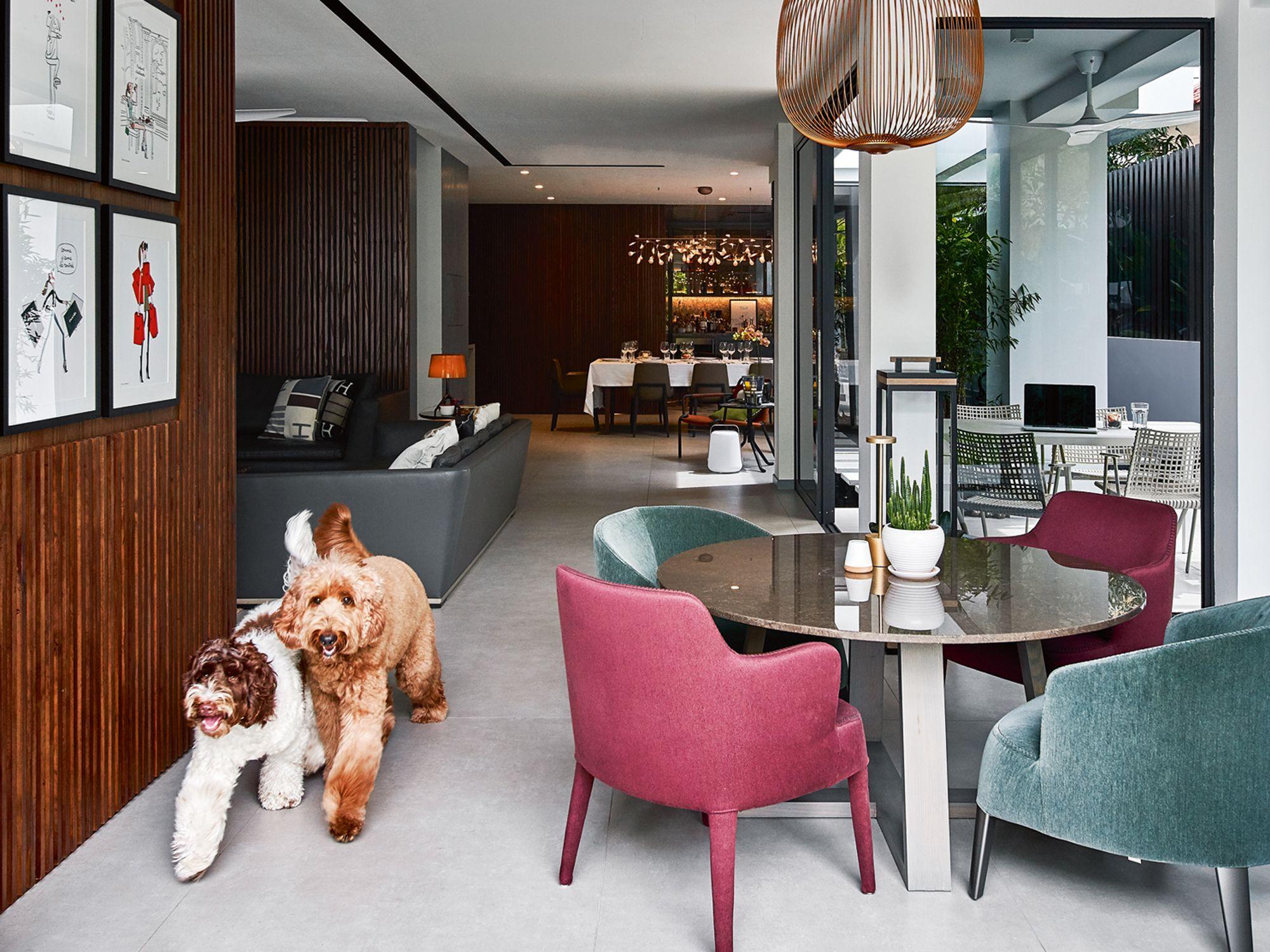 Home Tour: A Family's Dog-Friendly Semi Detached House