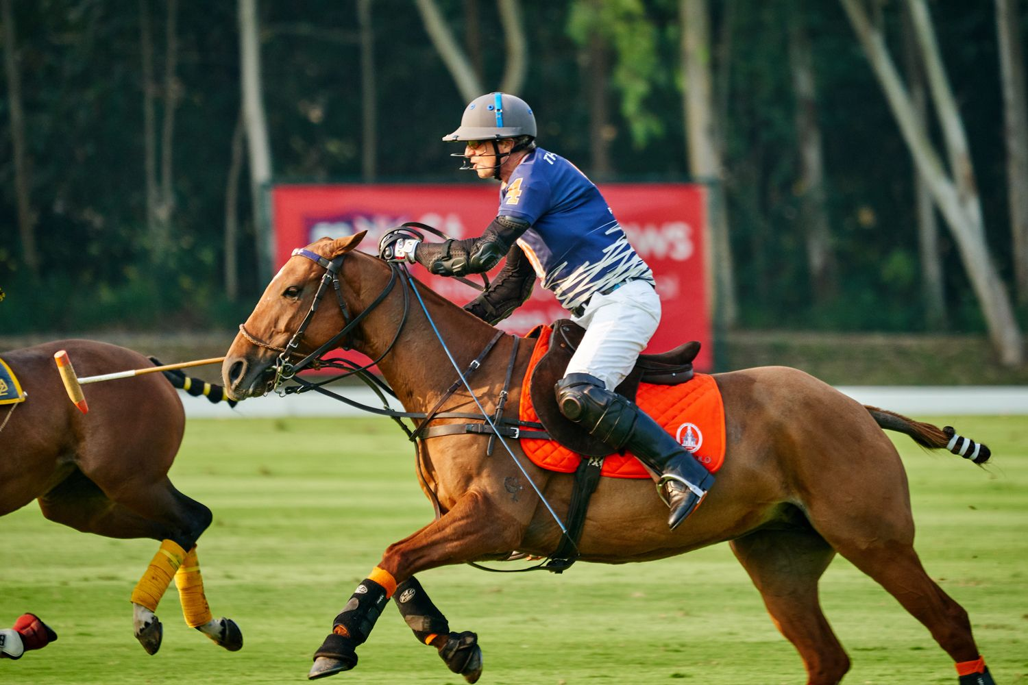 Where To Experience Polo In Thailand