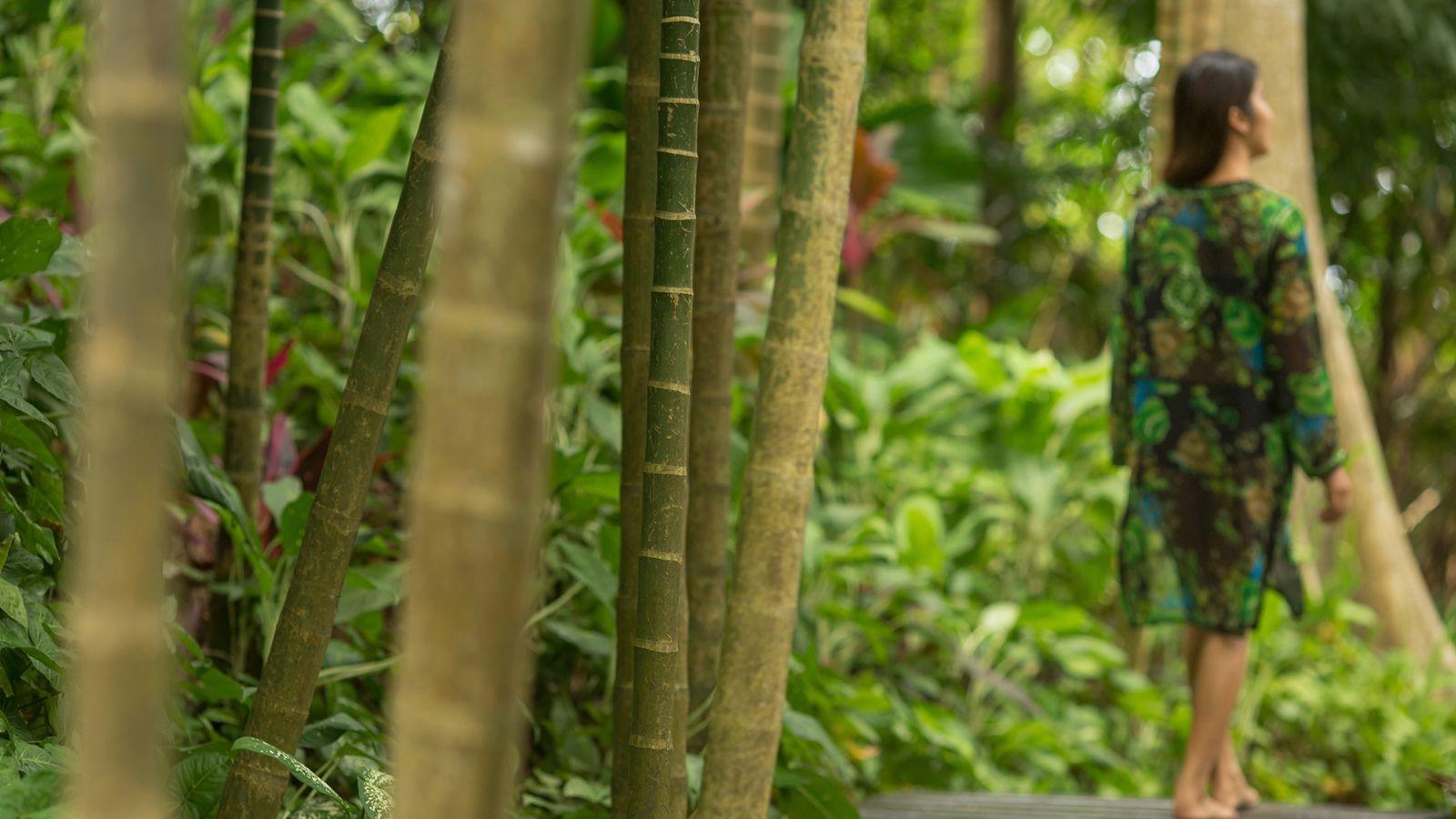 Four Seasons Resorts Thailand Go Virtual This Global Wellness Day