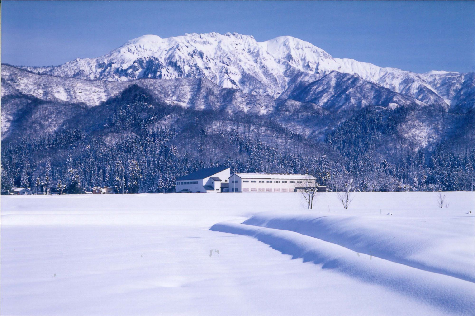 隱身傳說中的夢幻酒鄉!八海釀造精心演繹來自雪國的純淨風味