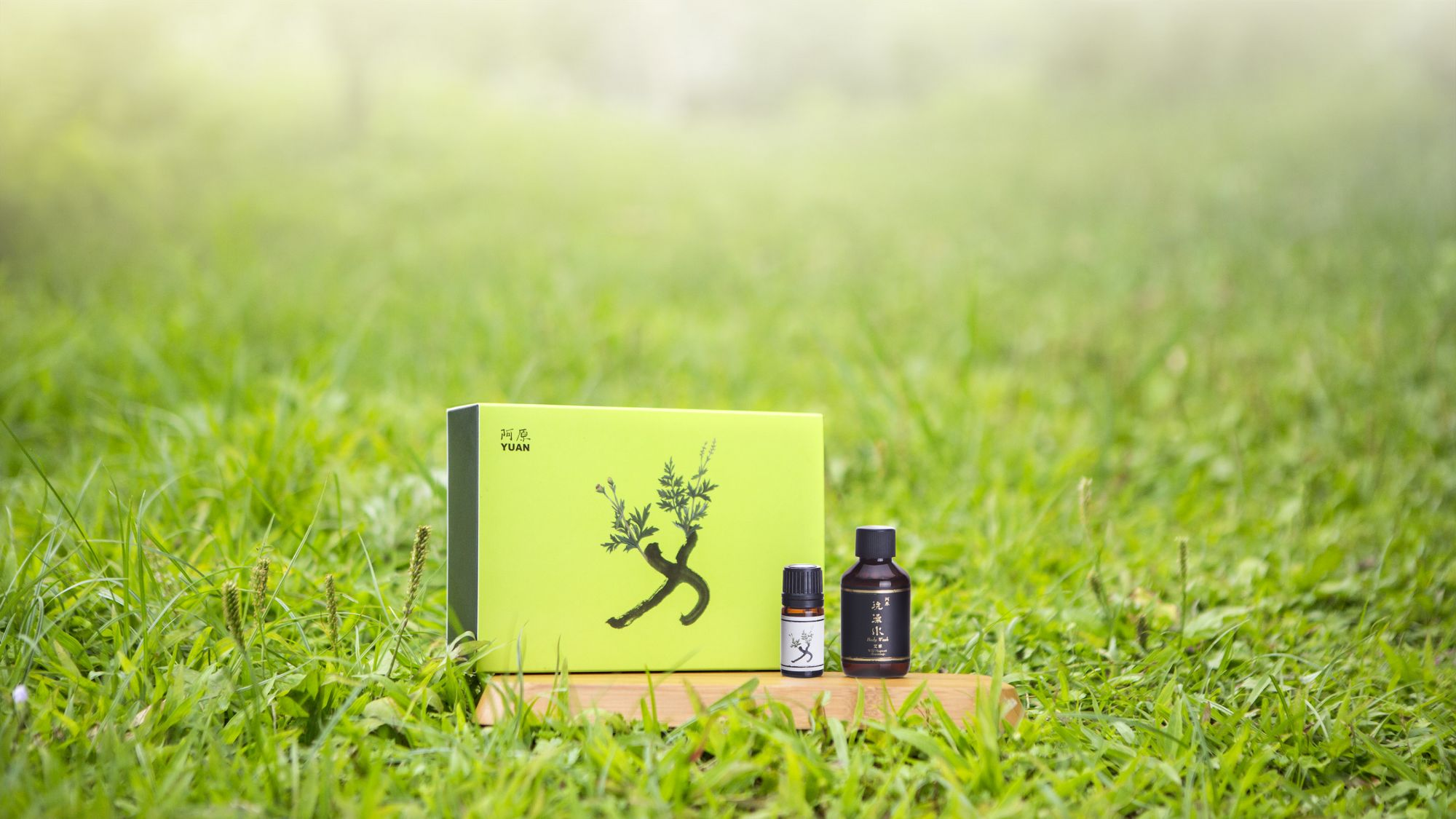 酷暑照護肌膚,端午淨化環境:台灣青草植物應用專家阿原,獻上百草之王「艾」的力量。