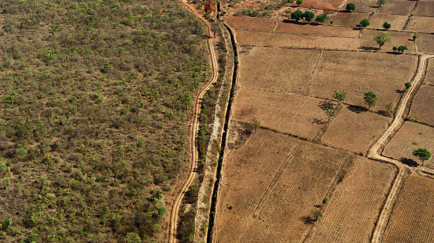 A photo from a drone shows a border between  a national park and farmland, where human-animal conflicts arise.