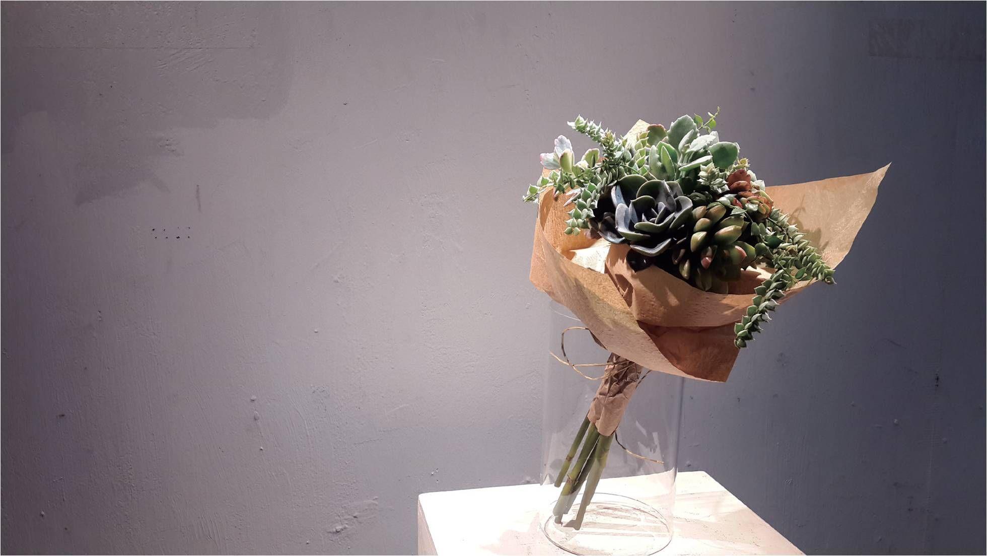 植物翻譯師:造一個內心的花園吧!因為每一個人心裡想要的風景都不一樣