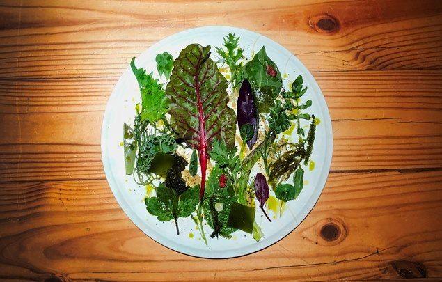 50種青蔬入菜!RAW春季菜單「絕對的綠」提倡環保健康新取向