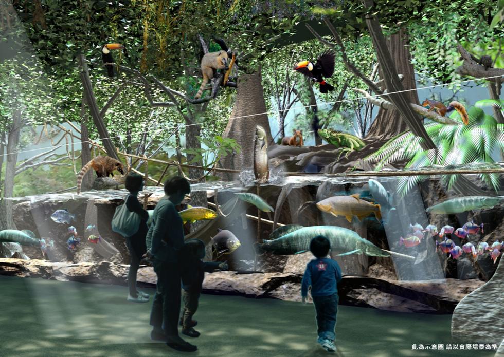Xpark「雨林探險」展區。
