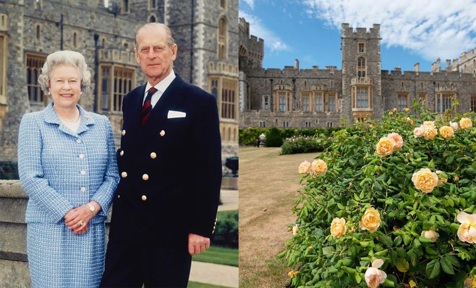 絕美英國皇室花園 40年來首度開放!不僅是英國女王的秘密花園  菲利普親王更親自設計園藝造景
