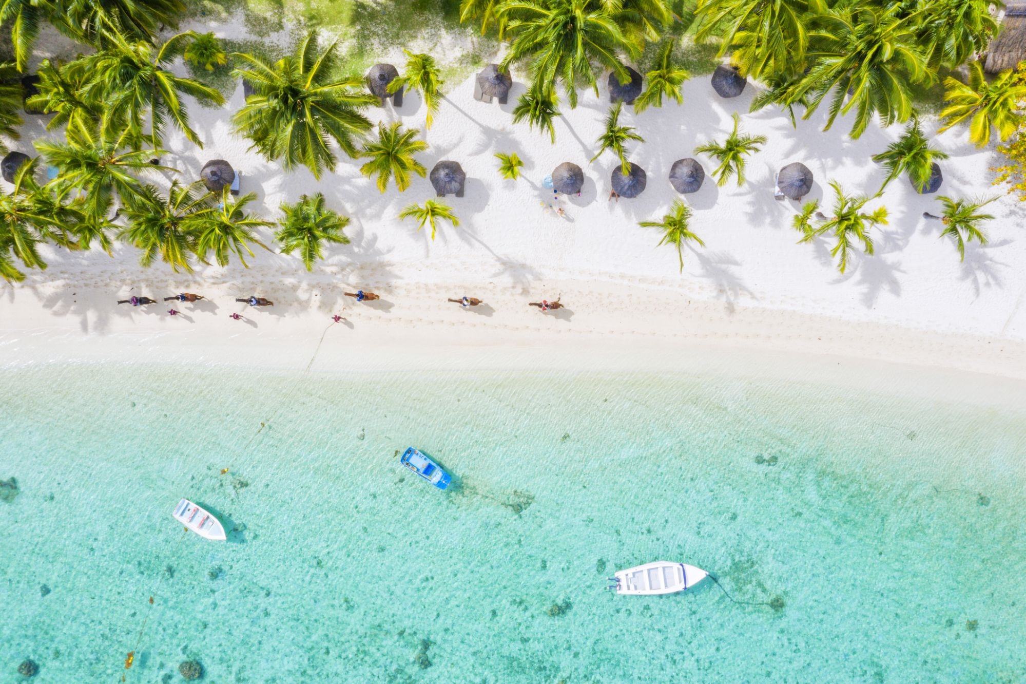 People enjoying riding horses riding on tropical sand beach facing the lagoon, aerial view, Indian Ocean, Mauritius Island