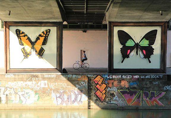 整座城市與蝴蝶一起「翩翩起舞」!法國藝術家以極其擬真的繪製技巧延續美麗、正視環境議題