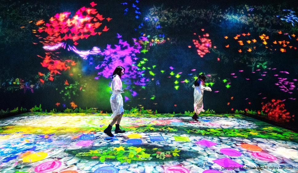 teamLab互動藝術展2021夏天即將來台展出!700坪未來遊樂園、九大展區 還有首度來台展出的創作