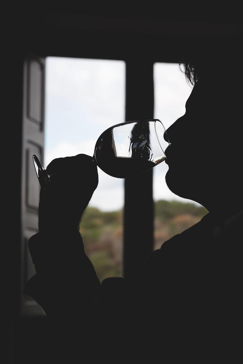 疫情時代下的選酒指南!編輯推薦18款葡萄酒與他們的產地