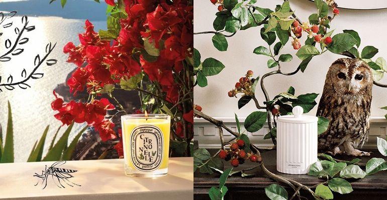 6 款夏季香氛蠟燭,推薦給喜歡淡雅清新香氣的你!