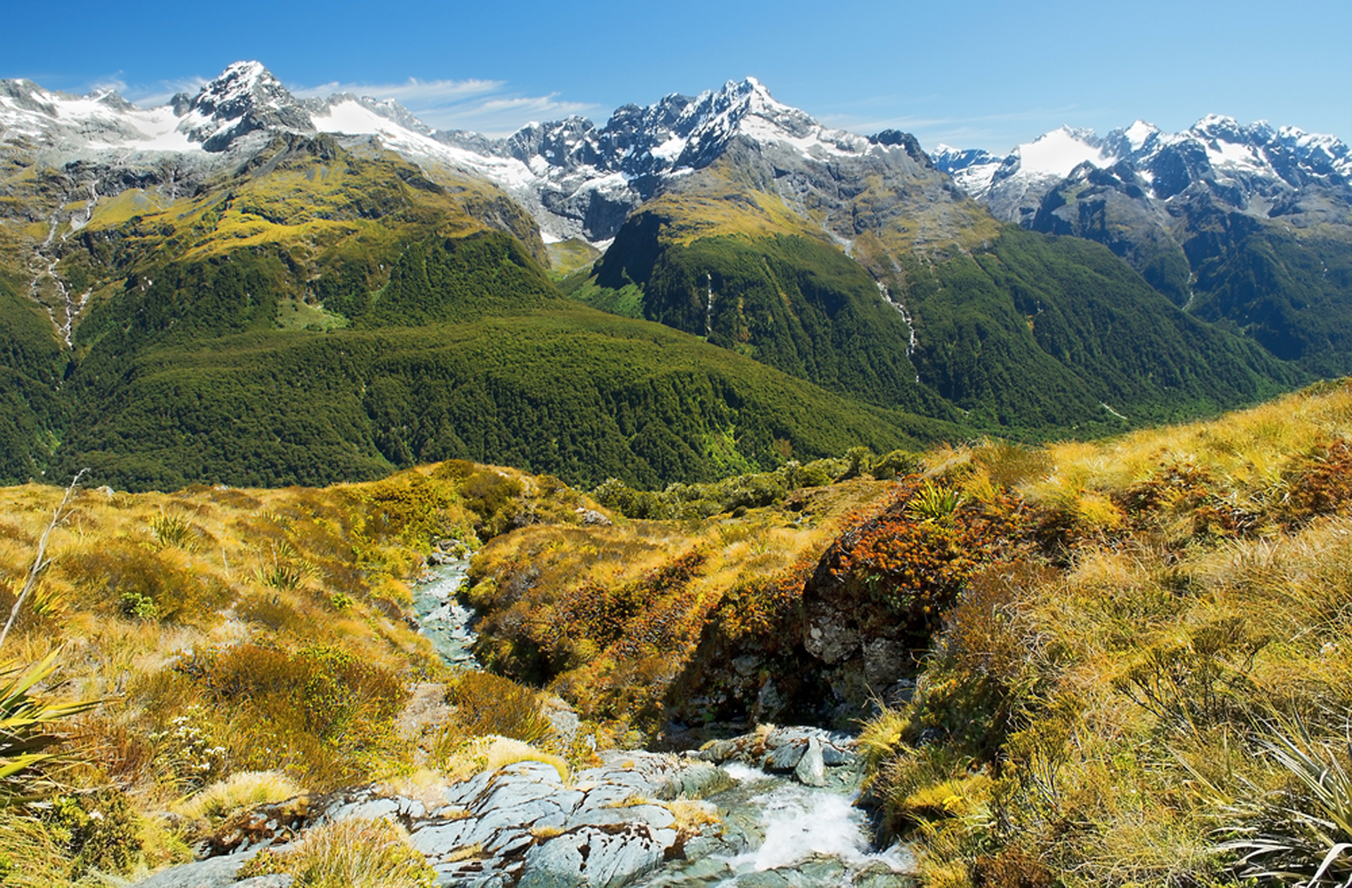 Discovering the fjords of new zealand on the milford track for The milford