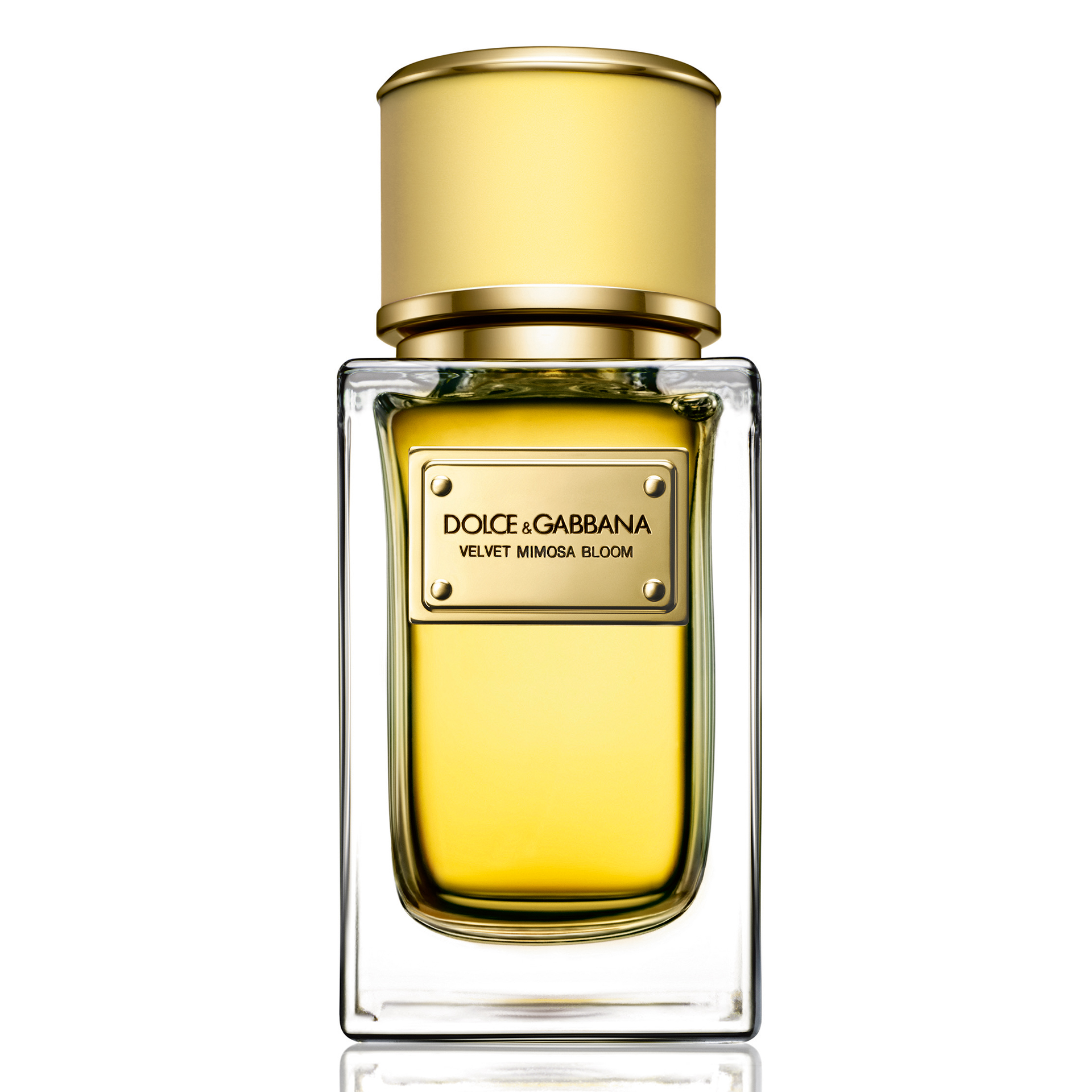 Dolce Gabbana Completes Its Velvet Collection With Two New Absolute Feminime An Homage To Feminine Sensuality Allure And Beauty Mimosa Bloom Brings Heady Notes Of Harmoniously Blended Narcissus