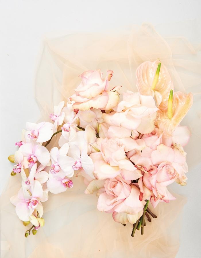 20170228_Flower2354.jpg