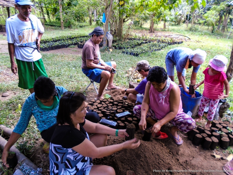Families of the San Cristobal Farmers Association manage a tree nursery whose seedlings are adopted by donors and then planted to bring back forests. As of today only 24% of forest remain in the country by Nova Regalario.jpg
