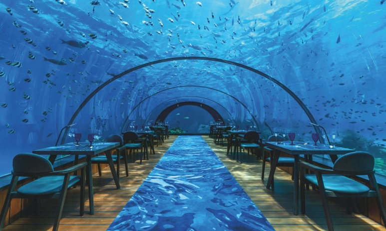 Maldives pic 1.jpg