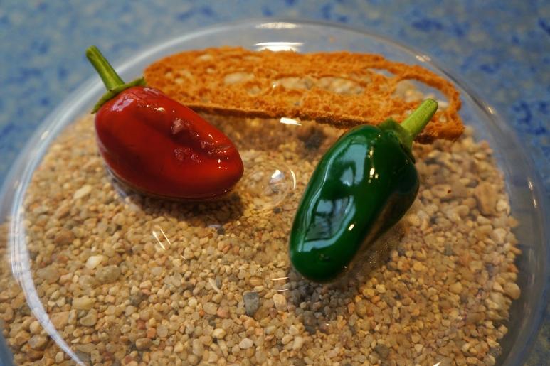 disfrutar-pepper-dessert-.jpg