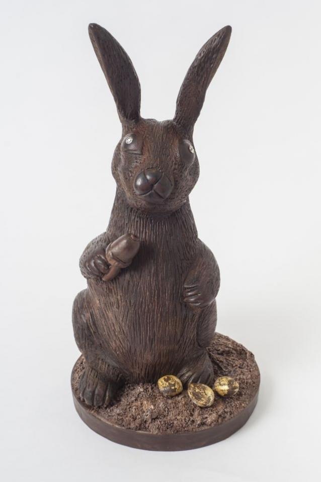 1- chocolatebunny2.1228c143552.w640.jpg -