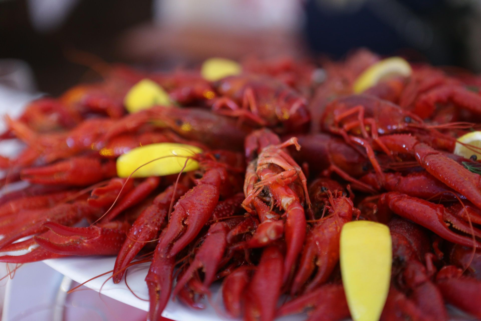Crayfish with lemon wedges and dill leaves