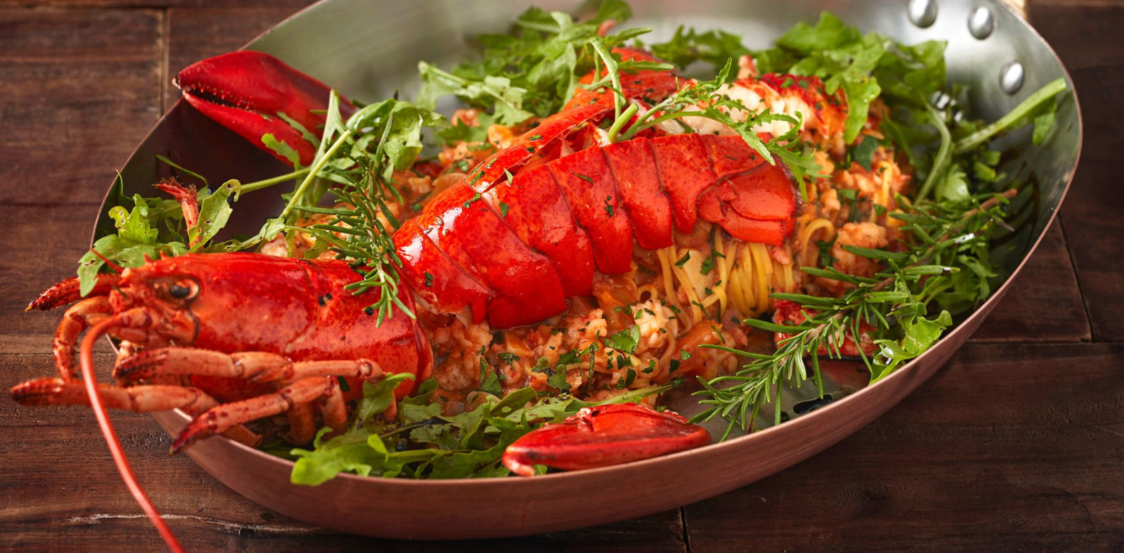 fancy lobster meal